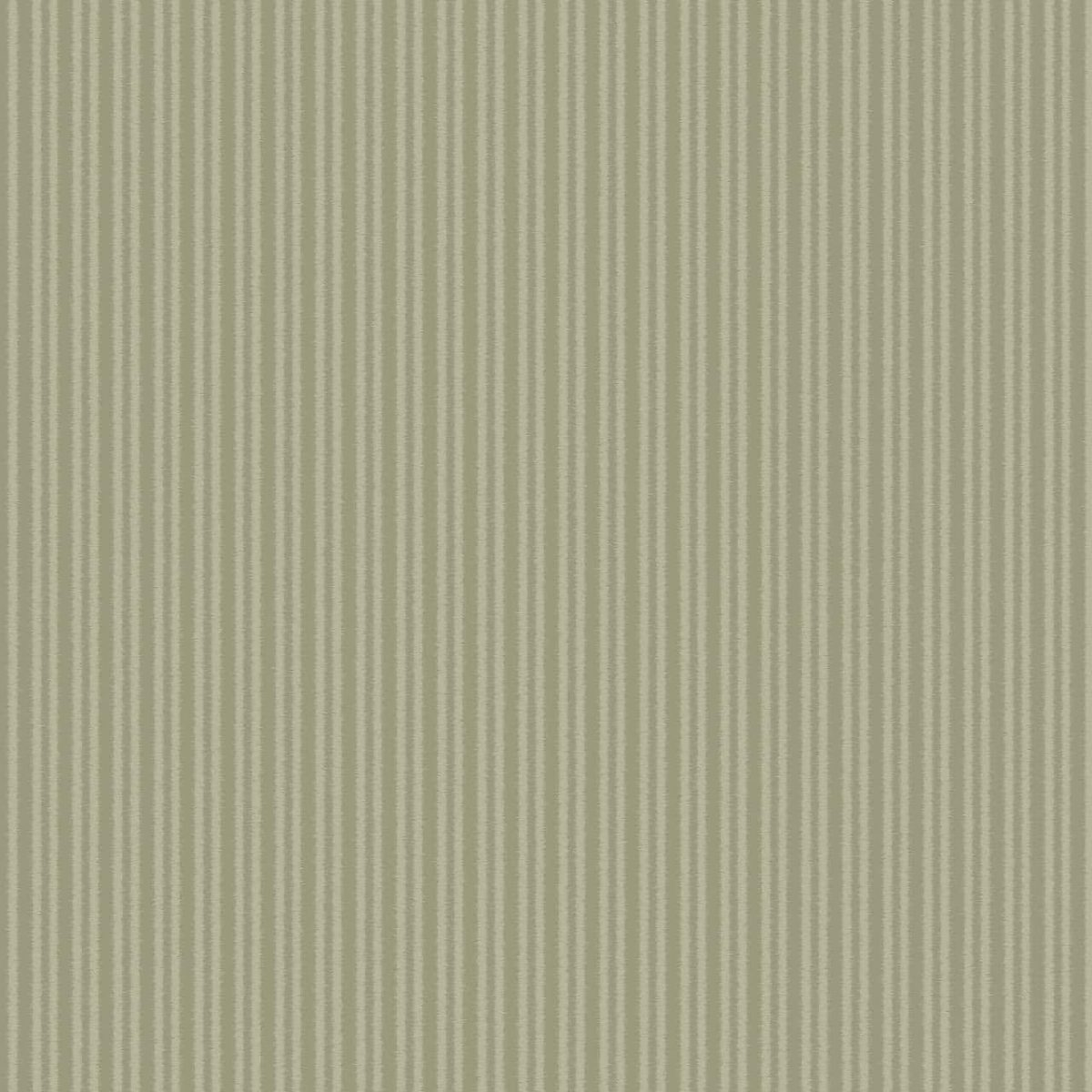 COTTON STRIPE OLIVE A Milan-Wallpaper-CO00124